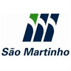 São Martinho Logo
